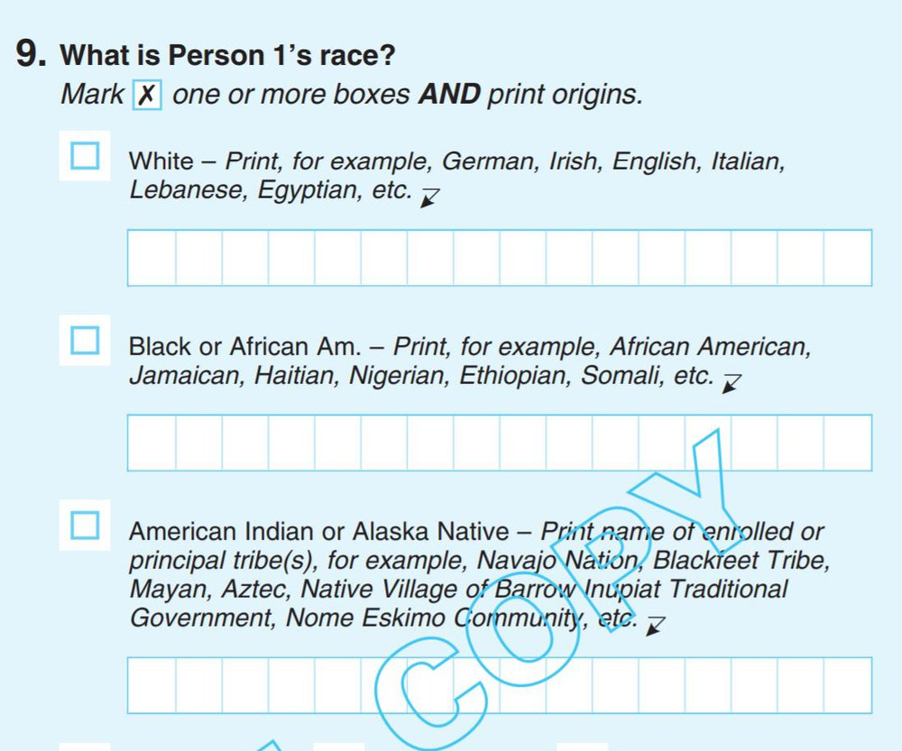 census-race2020.jpg